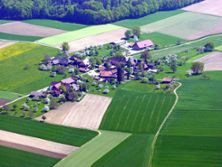 1) Luftfoto 2004: Weiler Herzwil von Südwesten